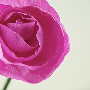 Dark Pink Rose - Paper Flower Handmade in UK