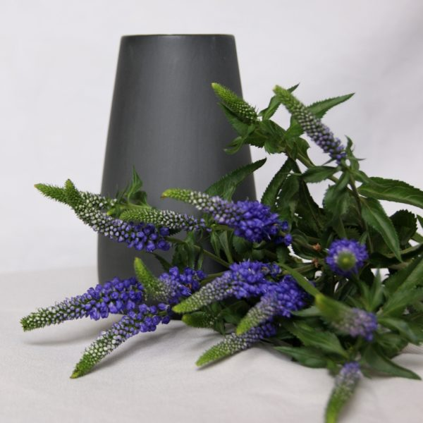 dark-grey-sadie-vase-sue-pryke-homeofjuniper-homeware-purple-flowers