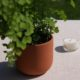 terracotta-plant-pot-fern-tealight-homeofjuniper-suepryke