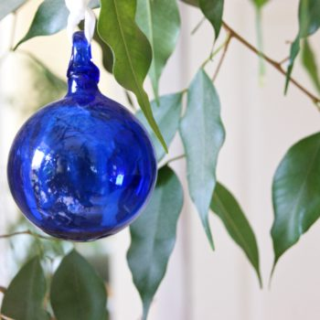 blue, glass bauble hanging in fig tree