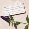 friendship-foundation-sign-homeofjuniper-sq-flower