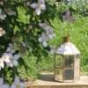 tall-lantern-garden-fairtrade-homeofjuniper