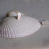 seaside-jewellery-shells-homeofjuniper
