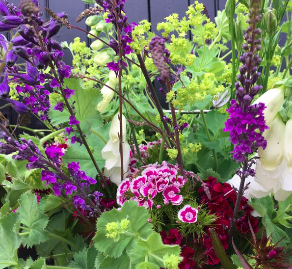 nightingale-gardens-homeofjuniper-blog-national-british-flowers-week