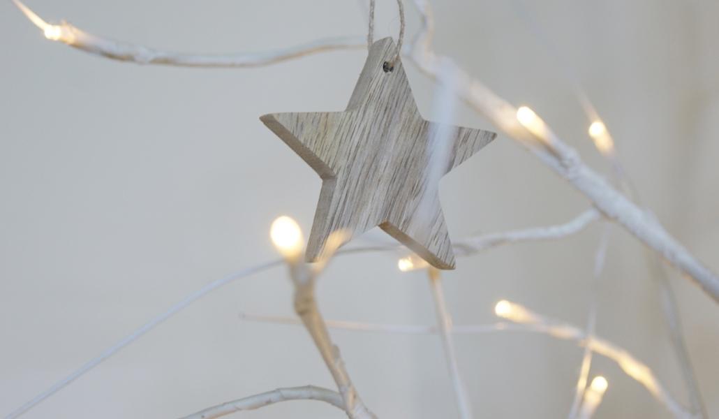 BANNER-star-light-tree-homeofjuniper