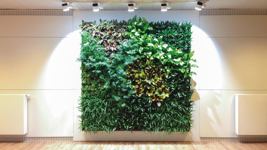 living-wall-plant-blog-homeofjuniper