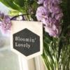 bloomin-lovely-banner-bloom-and-wild-flowers-homeofjuniper