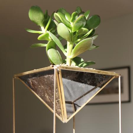 geometric-planter-succulent-home-of-la-juniper.j