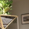 geometric-planter-succulent-homeofjuniper-tall.