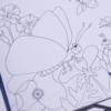 bug-cards-colour-in-card-set-little-nature-explorers-homeofjuniper-child-gift