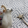 llama-decoration-star-spoon-cotton-throw-homeofjuniper