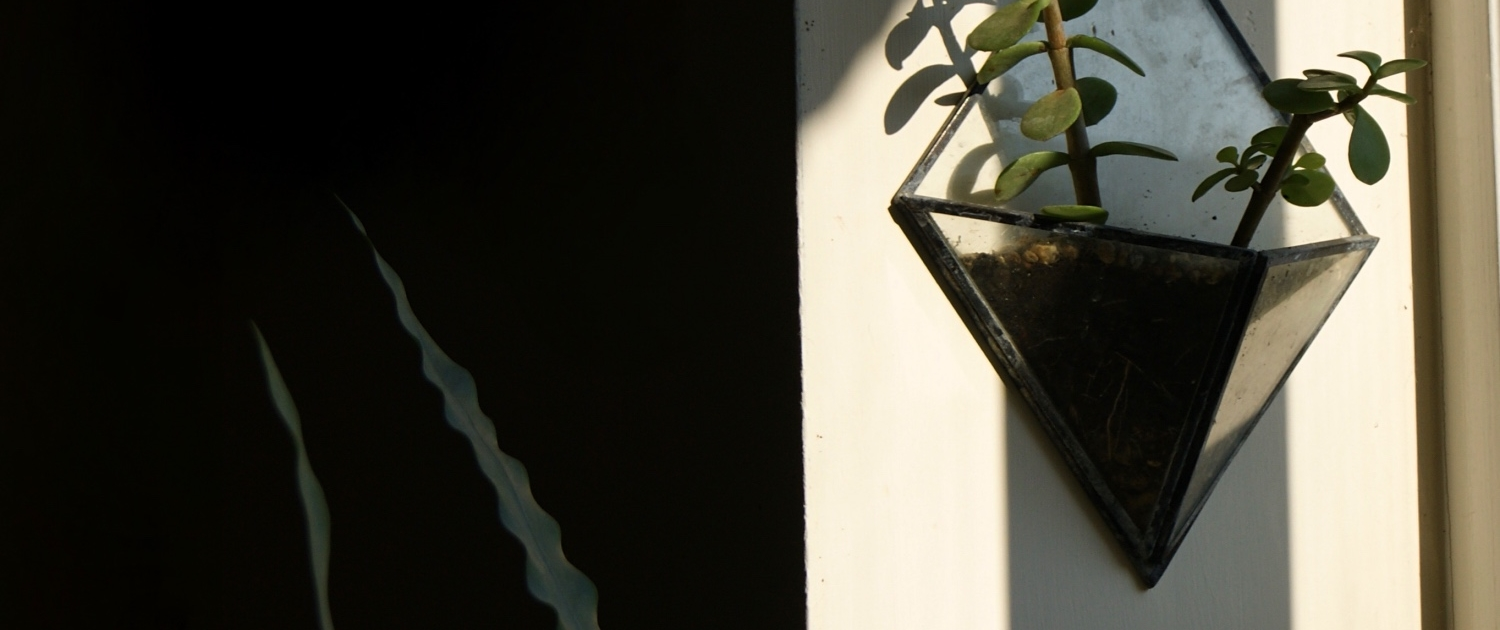 diamond-wall-planter-with-succulent