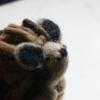 fair-trade-felt-hedgehog-decoration-homeofjuniper-handmade