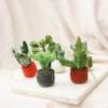 fair-trade-felt-succulent-plant-decorations