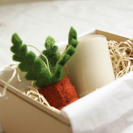 sq-succulent-plant-lover-gift-set