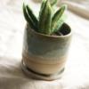 ceramic-planter-felt-succulent