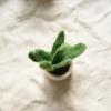 fair-trade-felt-succulent