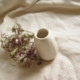 small-neutral-bud-vase-dried-astrantia