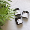 house-plant-aromatherapy-candles